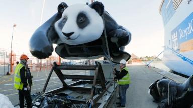 Ovation of the Seas Mama and Baby Panda Art Installation