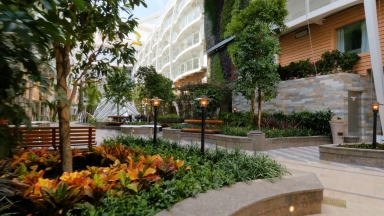 Getting to the Root of Royal Caribbean's Impressive Central Park: Engineering Harmony of the Seas' Most Distinctive Neighborhood
