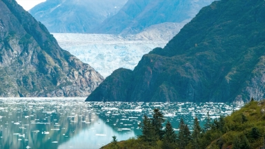 Why Take a Cruise to Alaska